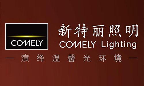 香港新特丽照明运输服务案例